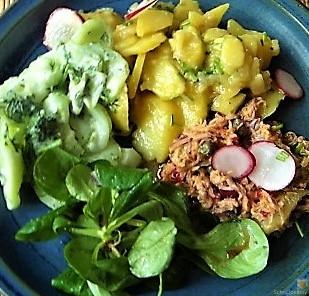 Kartoffel-Thunfisch-Feld- Gurkensalat (16)