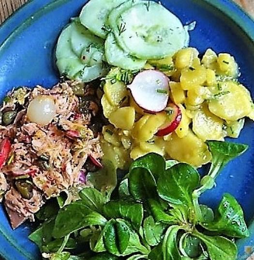 Kartoffel-Thunfisch-Feld- Gurkensalat (3)