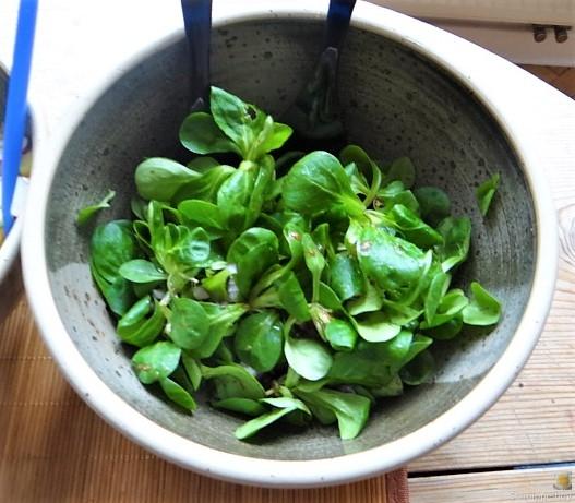 Kartoffel-Thunfisch-Feld- Gurkensalat (9)