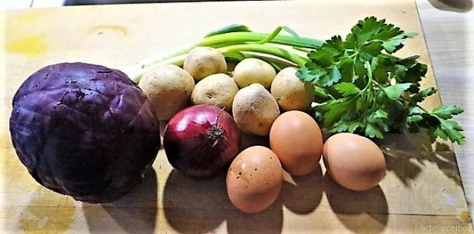 Tassenei und Rotkohlsalat (9)