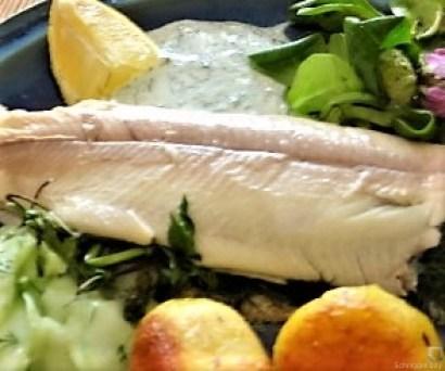 Forelle, Salate und Dip (7)