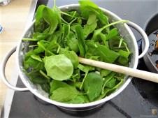 Patinakenstanpf,geräucherter Tofu (12)