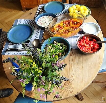 Gefüllte Paprika,Tzatziki,Bunter Salat (13)