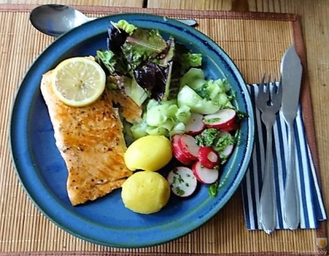 Lachs und Salate (22)