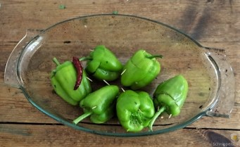 Paprika,grün,gefüllt (14)