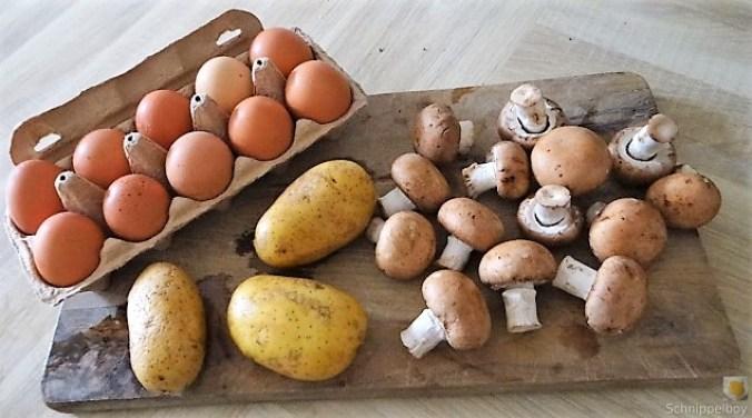 Rösti,Ei und Champignon (9)