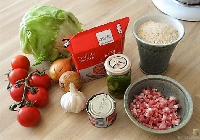Tomatenreis und Salat (10)
