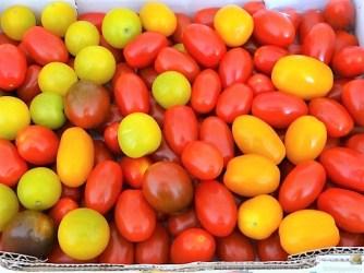 Grüner Spargel, Forelle, Tomaten auf Buchweizenpasta (11)