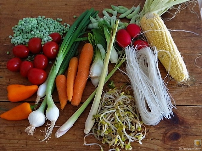 Wokgemüse mit Reisnudeln (9)