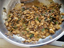 Zucchini Röllchen mit Champignon (16)