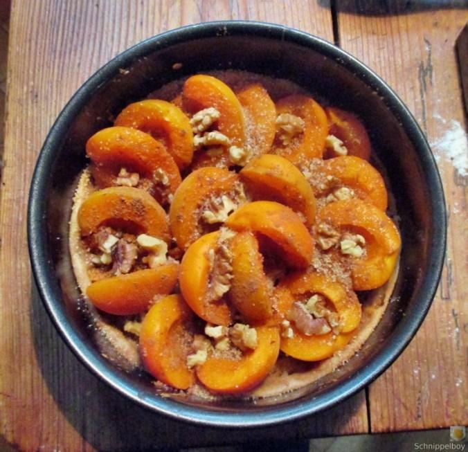 Aprikosenkuchen (7)