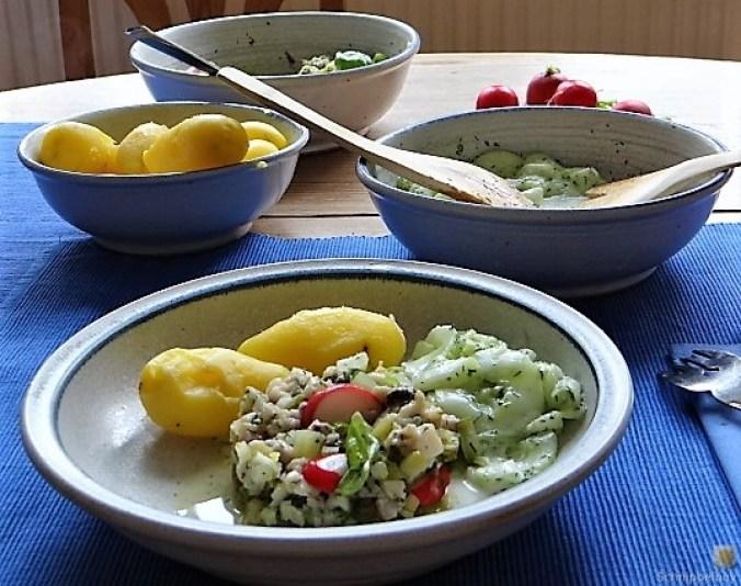 Matjes Tatar, Gurkensalat, Pellkartoffeln, Mirabellenkompott (5)