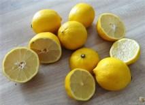 Zitronenhähnchen (11)