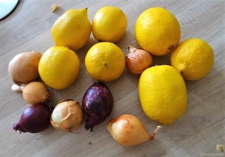 Zitronenhähnchen (9)