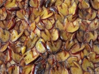 Bohneneintopf und Pflaumenkuchen (21)