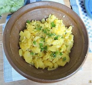 Grüner Hering, Kartoffelsalat, Gurkensalat (16)
