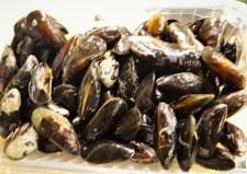 Gemüse, Meeresfrüchte, Nudeln (11)