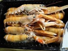 Gemüse, Meeresfrüchte, Nudeln (12)
