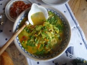 Gemüsesuppe leicht orientalisch gewürzt (20)