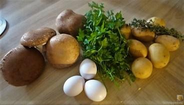 Kartoffel-Pilz Auflauf (8)