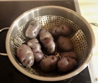 Buntes Gemüse mit violetten Kartoffeln (19)