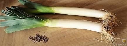 Lauch, Hackklößchen und Kartoffelstampf (9)