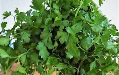 Linguine mit Oliven-Petersilien-Salsa (8)