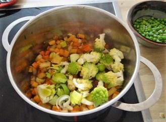 Gemüsesuppe und Joghurtspeise (12)