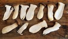 Ofengemüse und Fächerkartoffeln (11)