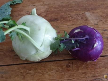 A Kohlrabi, Kartoffelstampf, Salsiccia Klößchen (7)