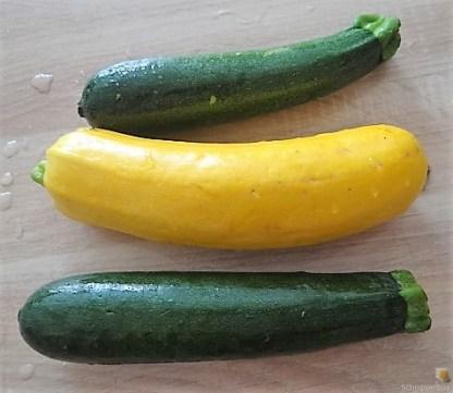 Zucchinipfanne und Hähnchenbrust (8)