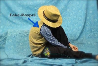 Shirt mit Fake-Paspel
