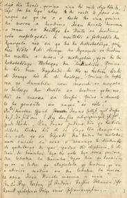Auszug aus dem Tagebuch des Missionars Albert Nachtigal