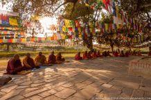 buddhist-monks-in-lumbini-large