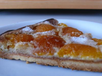 Aprikosenmarzipankuchen_m