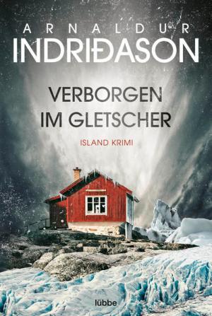 Verborgen im Gletscher   Schöner morden mit dem Bundeslurch