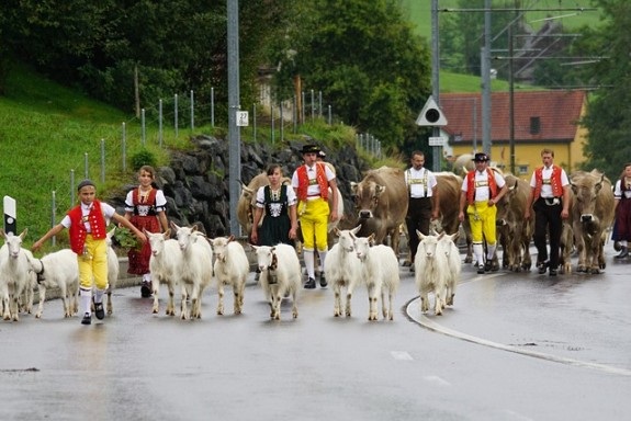 In der Schweiz wachsen die Menschen - glaubt man der Statistik - auch nicht mehr
