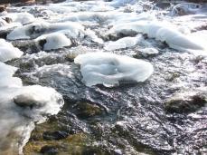 Fischtreppe im Eis