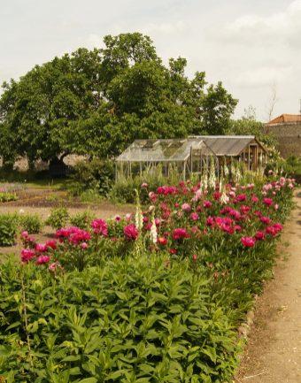 Ein Gartentraum
