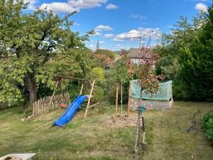 Der Walnuss Baum ist im oberen Teil des Hausgartens gepflanzt.