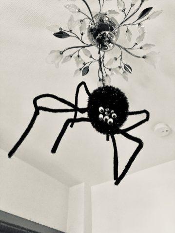 wird zur Spinne.