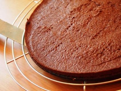 Kuchenboden mit Kakao ist immer gut