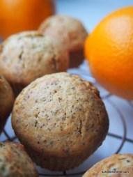 Mohn und Orange im Muffin