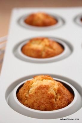 Honig-Muffins