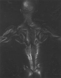 Dianora Niccolini, Untitled, ca. 2000.