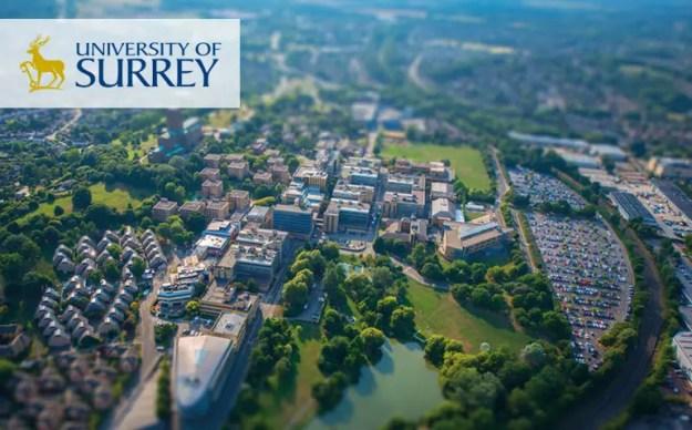 Visiting International Fellowship in the UK