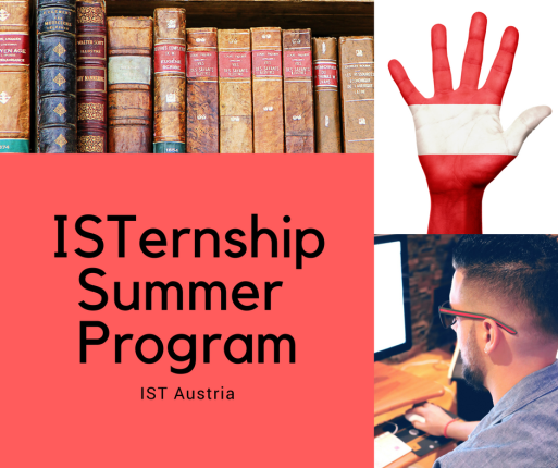 ISTernship Summer Program