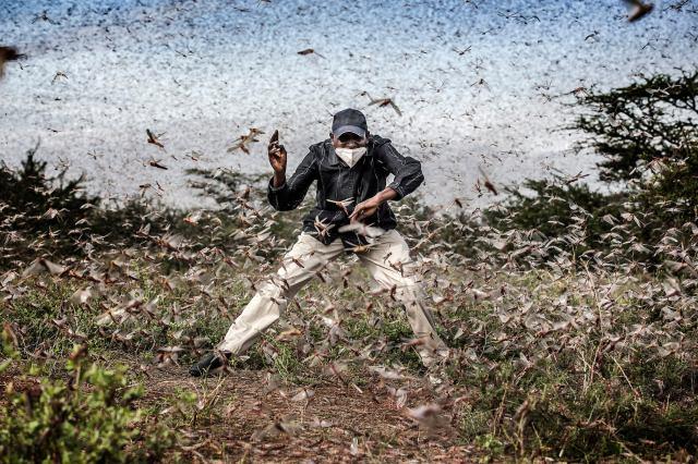 Wildlife & Nature Professional Photographer Winner: Sony World Photography Awards