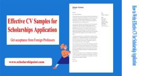 CV for Scholarship Application