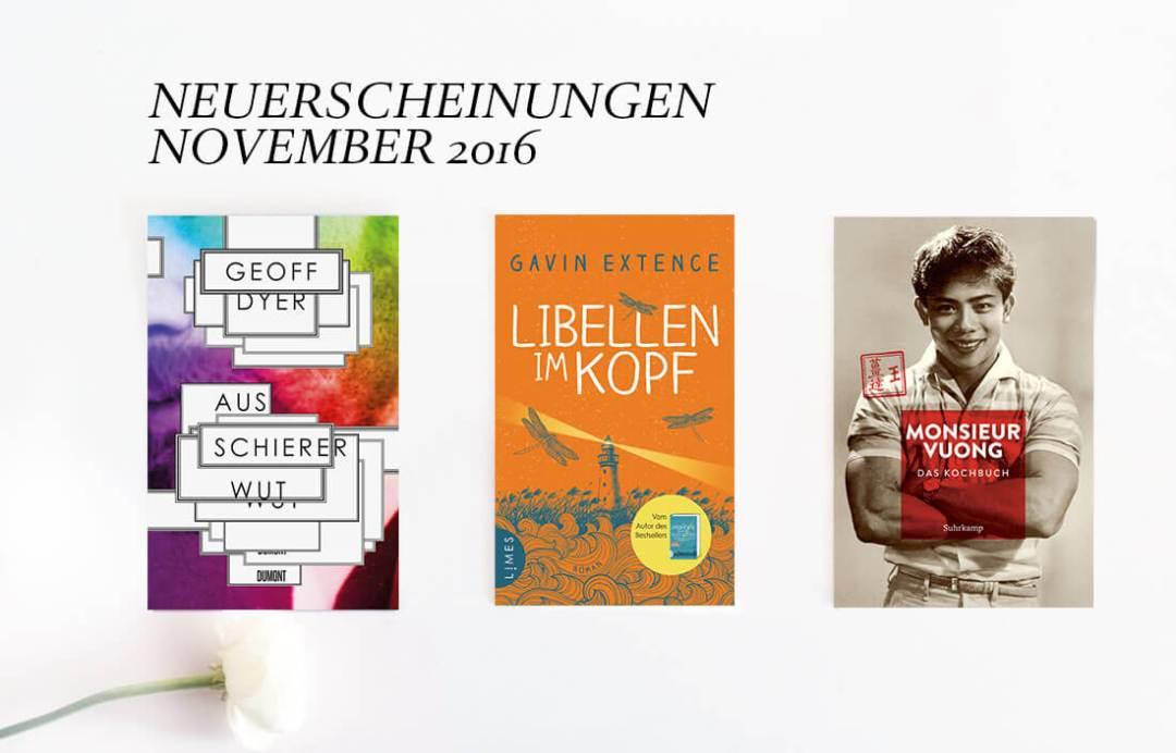 neuerscheinungen-buch-november-2016-schonhalbelf-buchblog-11
